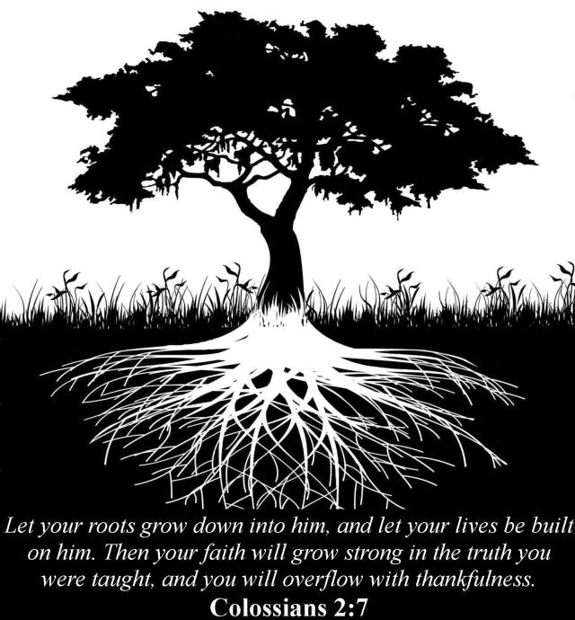 Roots-Colossians