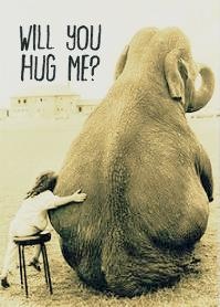 hug elephant 1